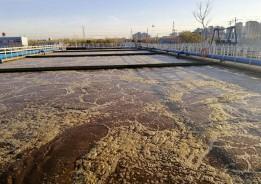 8万吨污水处理厂